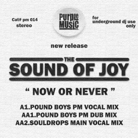 Sound of Joy 'Now or Never' (Purple Music)